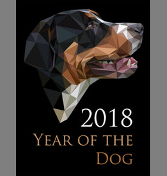 Image of swiss dog in low polygonal style vector