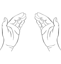 Two hands with open palms vector