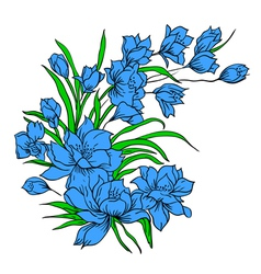 Flower bouquet painted by hand vector image