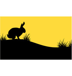 silhouette of bunny on orange backgrounds vector image vector image