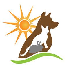 cat dog rabbit silhouettes creative design vector image