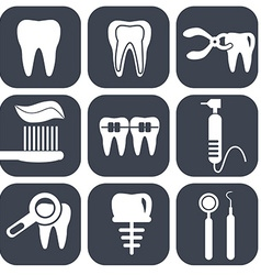 Dental icons set on grey vector image