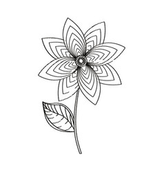 Flower decoration garden sketch vector