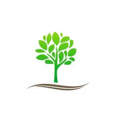 green tree plant organic nature logo vector image