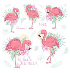 set exotic flamingos isolated on white vector image