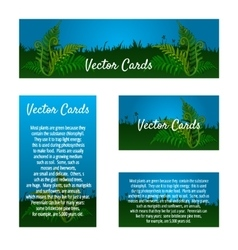 Set of four business cards with natural ornament vector