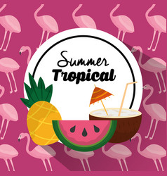 Summer tropical banner pineapple watermelon and vector