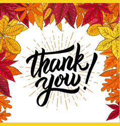 thank you hand drawn lettering phrase on vector image vector image