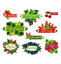 berry and fruit label set for food drink design vector image vector image