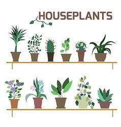 Set of indoor plants in pots vector image