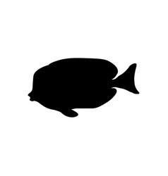 Acanthurus nigricans gold-rimmed tang silhouette vector