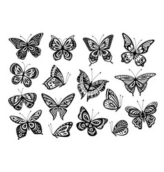 black butterflies drawing butterfly silhouette vector image
