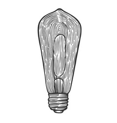 electric light bulb vector image