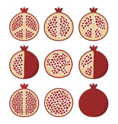 pomegranate cuts vector image
