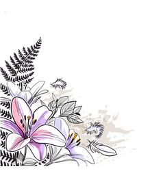 sketch flower background card lily purple vector image