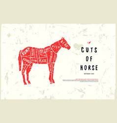 Stock horse cuts diagram vector
