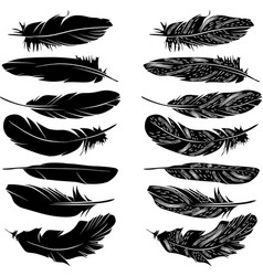 feathers silhouette set vector image