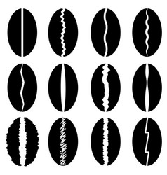 set of different coffee beans silhouettes vector image vector image
