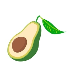 Half of avocado icon cartoon style vector image vector image