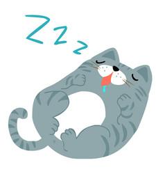 happy fat gray cat sleeping vector image vector image