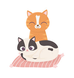 cats make me happy cute cats in cushion cartoon vector image