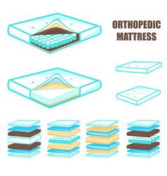comfortable layered orthopedic mattress set vector image