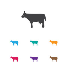 Of zoology symbol on cow icon vector