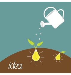 Watering can and lamp bulb plant Growing idea vector