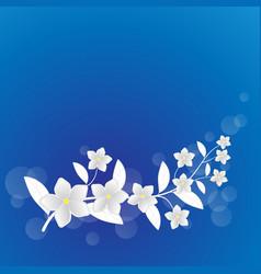 white flower background vector image