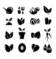 Seed and gardening icons vector image vector image