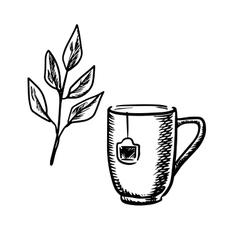 Sketch mug with tea leaves vector image vector image