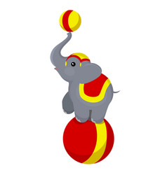 circus elephant on the ball vector image