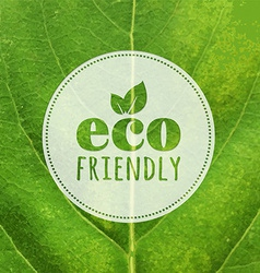 Eco Label With Leaf Texture vector image