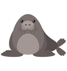 Seal with round body vector