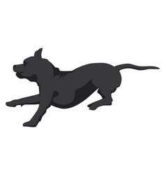 Silhouette running brindle staffordshire terrier vector