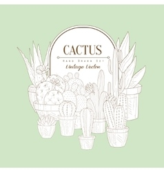 Vintage Sketch With Cactus vector image