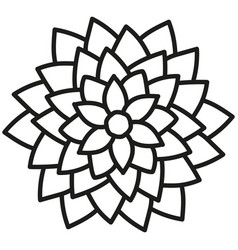 black and white round symmetrical astra flower vector image