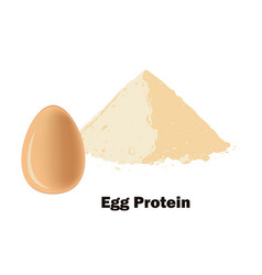 brown eggs on bown and red ceramic spoon with vector image
