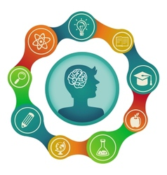 education concept - brain and creativity vector image vector image