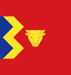 Flag of birmingham vector