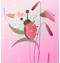 Ladybird on a flower vector