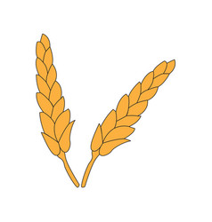 Pair of wheat icon vector
