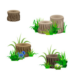 set of tree stubs in grass and flowers for vector image