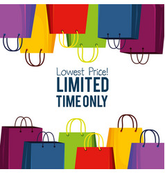 shopping bags to special online sale vector image