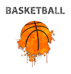 basketball as stains vector image
