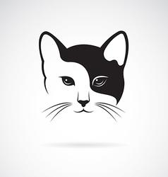 Cat vector image vector image
