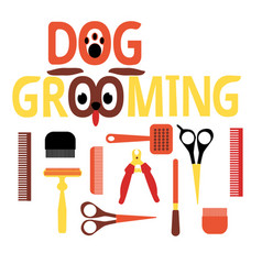 a set of tools for grooming flat design colorful vector image