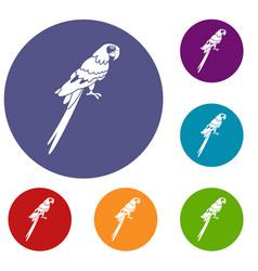 Brazilian parrot icons set vector