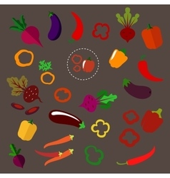Flat beets eggplants chili and bell peppers vector image