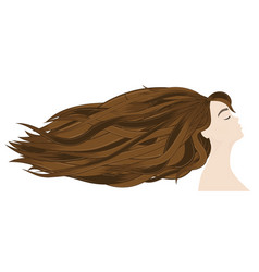 Hair extensions in the professional salon profile vector